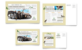 Nature & Wildlife Conservation - Postcard Template