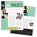 Veterinarian Newsletter Design